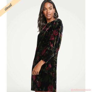[Ann Taylor] Velvet Floral Bishop Sleeve Dress